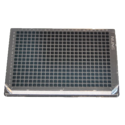 Product photo of Nunc 242764 Microplate